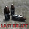 Last Bullet